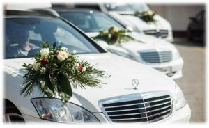 საქორწინო მანქანები . დიდი არჩევანი
